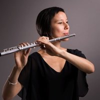 Flute, piccolo, barock flute lessons for all levels, in Spanish, Japanese, French or German, in Madrid.