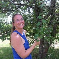 The Well Being Coach Creating lasting changes to your Food, Mood and Mindset - Moncton NB